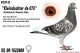 1NL_08-1522669_Duivin