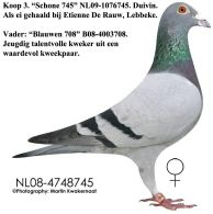 rauw_3333