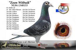 witbuik1